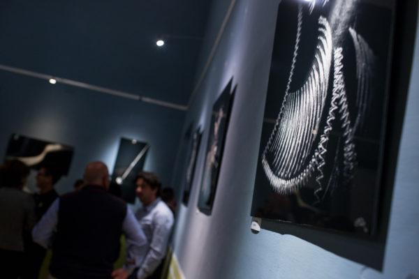 JP Exhibition LR-41